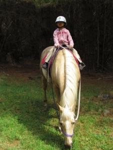 LA riding horse