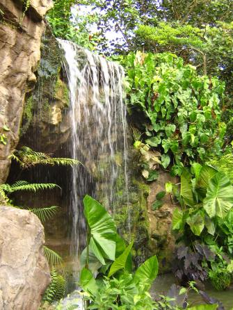 Singapore_Botanic_Gardens_waterfall